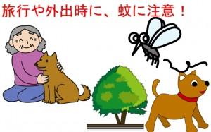 蚊とハイエース・網戸